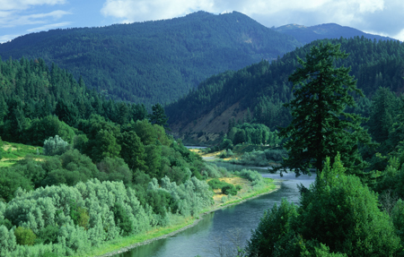 http://www.dreamstime.com/stock-images-rogue-river-image23150164